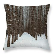 January Forest Throw Pillow