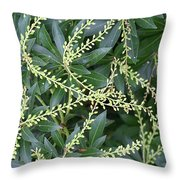 Japanese Andromeda Throw Pillow by William Selander