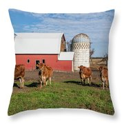 Jersey Steer Is A Curious Beast Throw Pillow