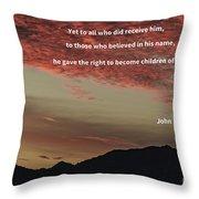 John 12 Throw Pillow