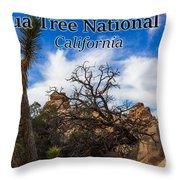 Joshua Tree National Park, California Box Canyon 02 Throw Pillow