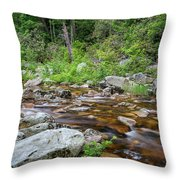 June Morning At The Peterskill Throw Pillow