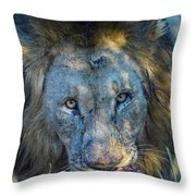 Jungle King With Kill With Killer Looks Throw Pillow