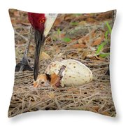 Just Hatching Throw Pillow