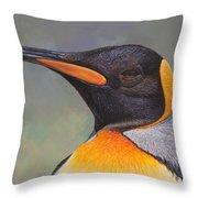 King Penguin Portrait By Alan M Hunt Throw Pillow by Alan M Hunt