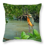 Kingfisher In The Mangroves Throw Pillow