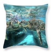 Kissing Turtle Throw Pillow