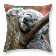 Koala Catching Zs Throw Pillow