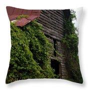Kudzu Barn 2 Throw Pillow