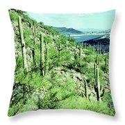 Lake Pleasant Az 045a Throw Pillow