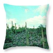 Lake Pleasant Az 047a Throw Pillow