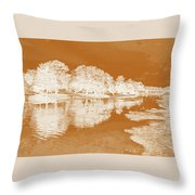 Lake Reflections In Brown Throw Pillow