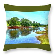 Lake Reflections On A Sunny Day Throw Pillow