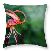 Lancifolium - The Tiger Lily Throw Pillow