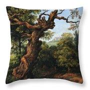 Landscape After A. Van Everdingen Throw Pillow