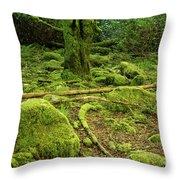 Landscape At Torc Waterfalls Throw Pillow