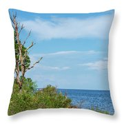 Landscape By The Sound Throw Pillow