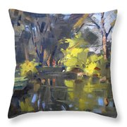 Last Suntouches In Ellicott Creek Park  Throw Pillow