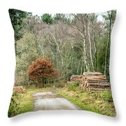Late Leaves Throw Pillow by Nick Bywater