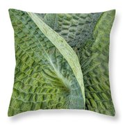 Laughing Leaves Throw Pillow