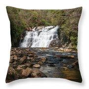 Laurel Falls In Spring I Throw Pillow