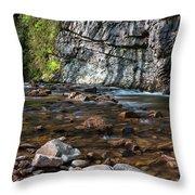 Laurel Fork In Spring I Throw Pillow