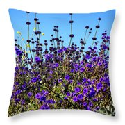 Lavender Blooms  Throw Pillow