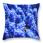 Lavender Field With Bee Throw Pillow