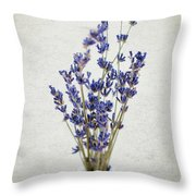 Lavender Throw Pillow by Nicole Young