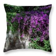 Lavender Pot Throw Pillow