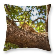 Lc13 Throw Pillow by Joshua Able's Wildlife