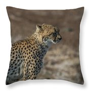LC5 Throw Pillow by Joshua Able's Wildlife