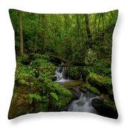 Lee Falls Cascades Throw Pillow