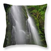 Lee Falls Close Up Throw Pillow