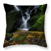 Lee Fall's Lush Vegetation Throw Pillow