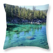 Let's Get Naked  Throw Pillow by Sean Sarsfield