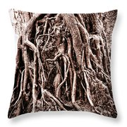 Life Is Complicated - Sepia Throw Pillow