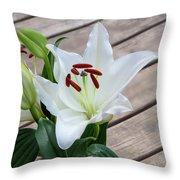 Lily Casa Blanca 1 Throw Pillow