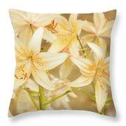 Lilycrest Dainties Throw Pillow
