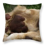 Lion's Feet Throw Pillow