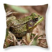 Little Green Frog Throw Pillow by William Selander