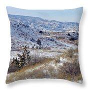 Little Missouri Winter Prairie Throw Pillow