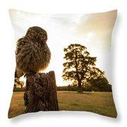 Little Owl Sunset Throw Pillow