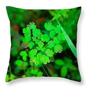 Little Patches Of Color  Throw Pillow