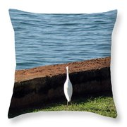 Little White Egret Egretta Garzetta Throw Pillow