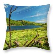 Loch Eynort, Isle Of Skye Throw Pillow