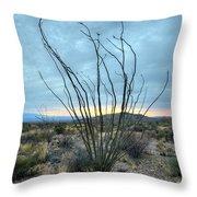 Lone Bush - Sunrise Throw Pillow
