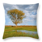 Lone Tree By A Wetland Throw Pillow