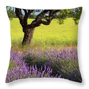 Lone Tree In Lavender And Mustard Fields Throw Pillow by Brian Jannsen