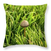 Lonely Little Mushroom Floating On The Grass Throw Pillow